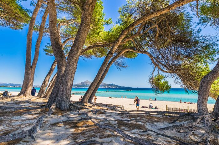 Summer Sun Beach Alcudia Majorca Spain